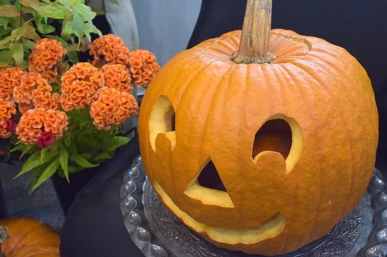 ハロウィンのかぼちゃとオレンジ色のお花