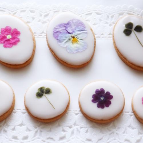 お花のアイシングクッキー作りワークショップ@二子玉川 蔦屋家電RELIFE STUDIO FUTAKO