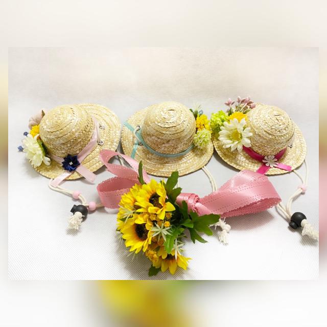 6/13 ラジカルフラワーを使ったわんちゃんねこちゃんの麦わら帽子の写真